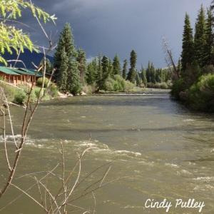 Our cabin was on the  Rio Grande, Creede, CO